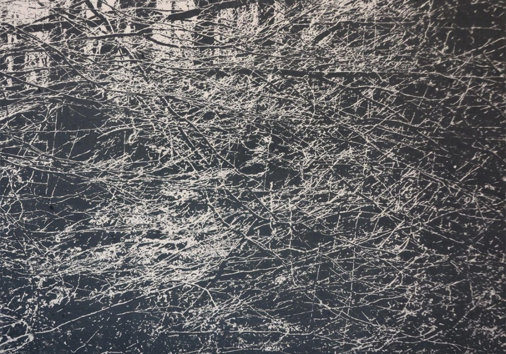 BuchenI,2020,42x30cm,Holzschnitt_Lasertechnik